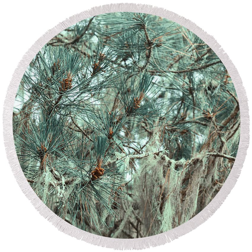 Pine Round Beach Towel featuring the photograph Pine Cones And Lace Lichen by Angela Stanton