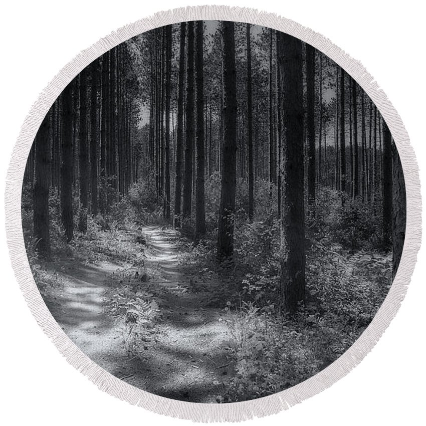 Trees Round Beach Towel featuring the photograph Pine Grove by Scott Norris