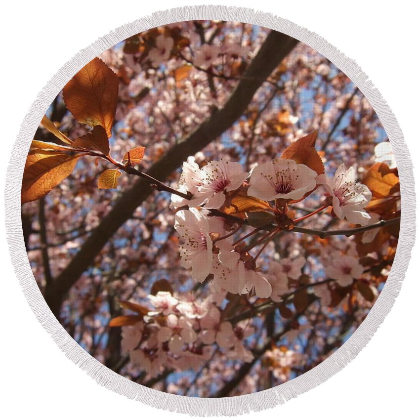 Round Beach Towel featuring the photograph Pink And Leaves by Katerina Naumenko