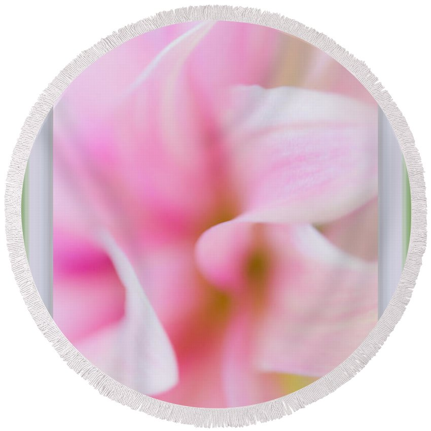 Pink Dahlia Round Beach Towel featuring the photograph Pink Dahlia Petals by Marie Jamieson