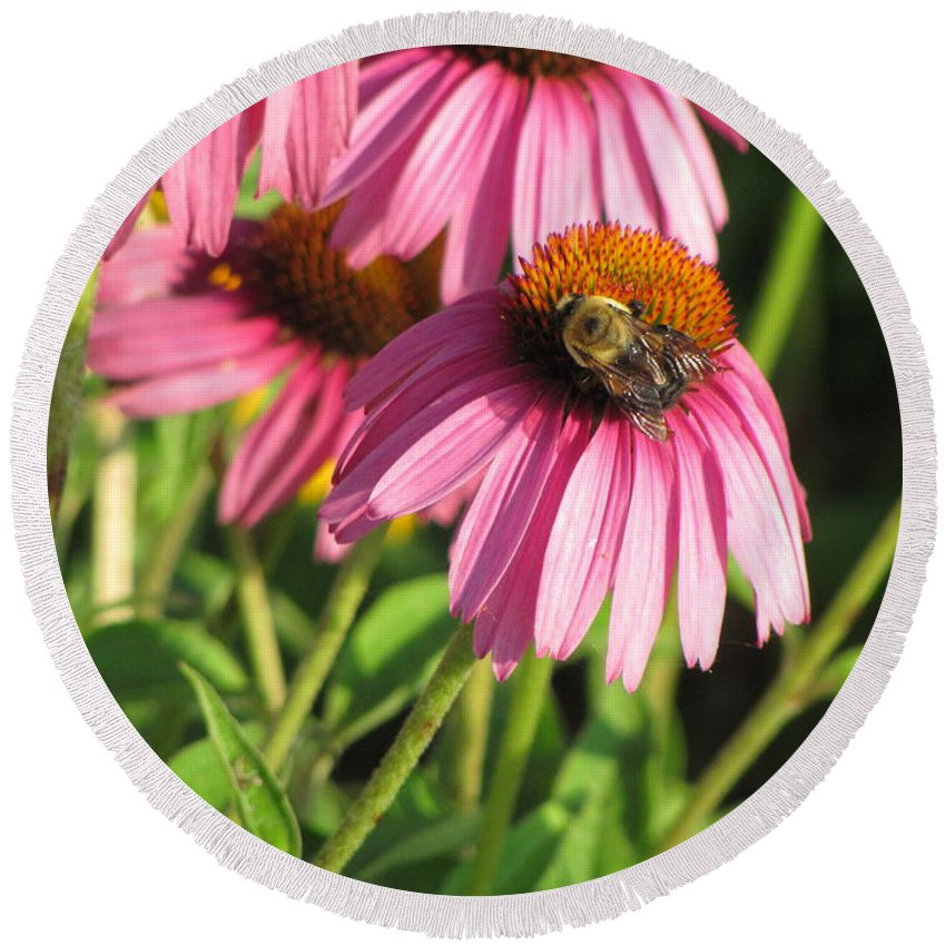 Flower Round Beach Towel featuring the photograph Pink Flower And Bee by Anita Burgermeister