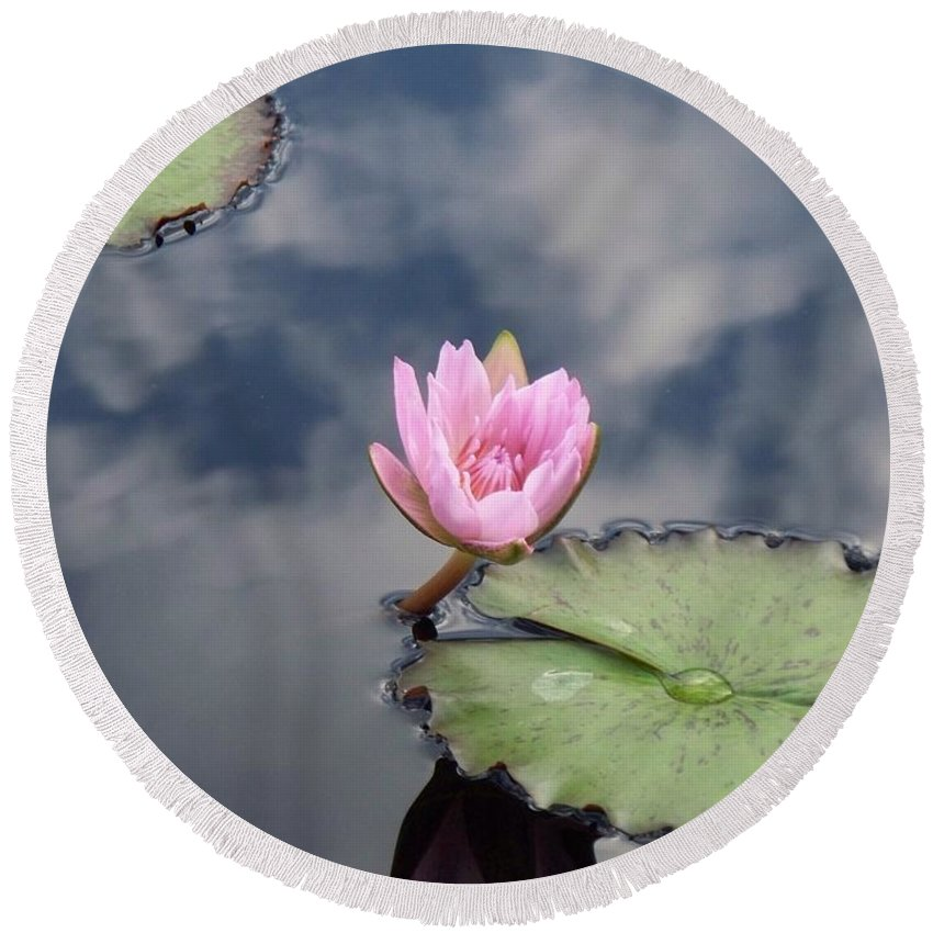 Water Lilies Round Beach Towel featuring the photograph Pink Lily Monet by Eric Schiabor