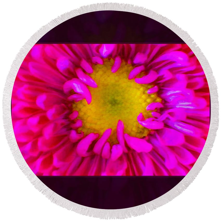 5x7 Round Beach Towel featuring the painting Pink Petals Envelop A Yellow Center An Abstract Flower Painting by Omaste Witkowski