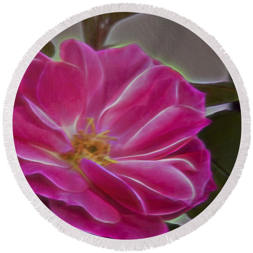 Pink Rose Round Beach Towel featuring the photograph Pink Rose Digital Art 2 by Walter Herrit