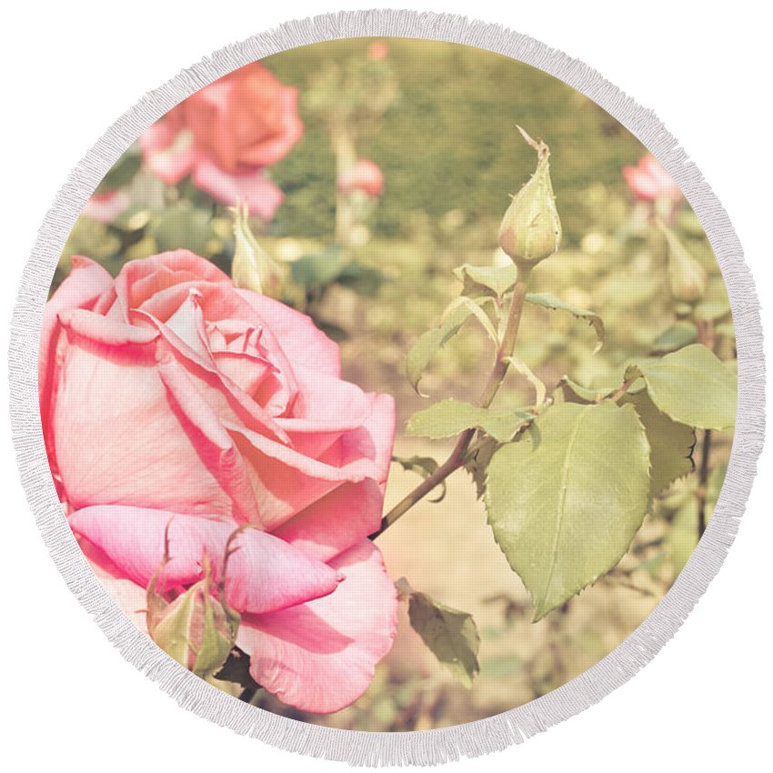 Beautiful Round Beach Towel featuring the photograph Pink Rose by Tom Gowanlock
