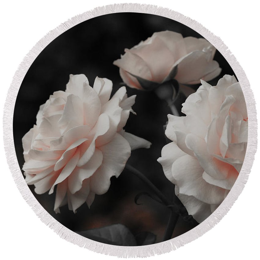 Flowers Round Beach Towel featuring the photograph Pink Trio by Michelle Joseph-Long