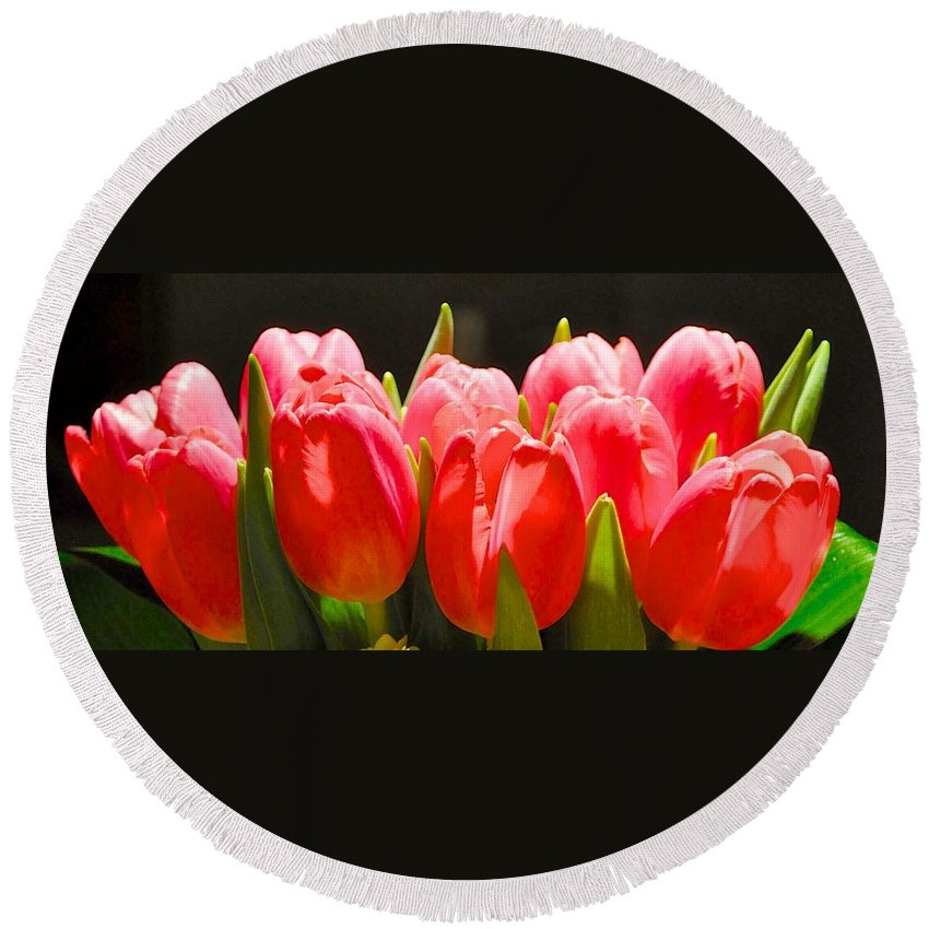 Valentine Flower Round Beach Towel featuring the photograph Pink Tulips In A Row by Kristina Deane