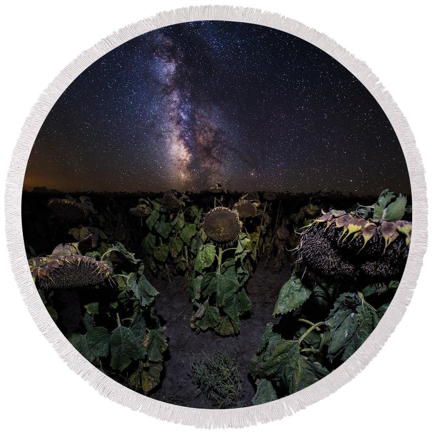 Milky Way Round Beach Towel featuring the photograph Plants Vs Milky Way by Aaron J Groen