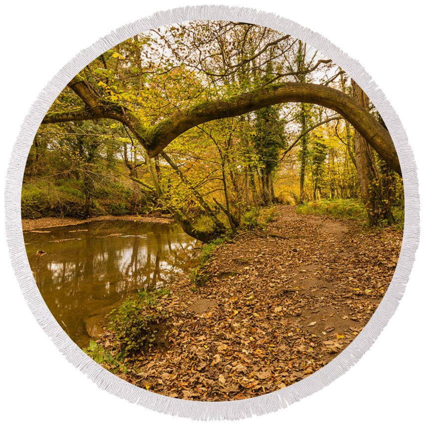 Northumberland Round Beach Towel featuring the photograph Plessey Woods Riverside Footpath by David Head