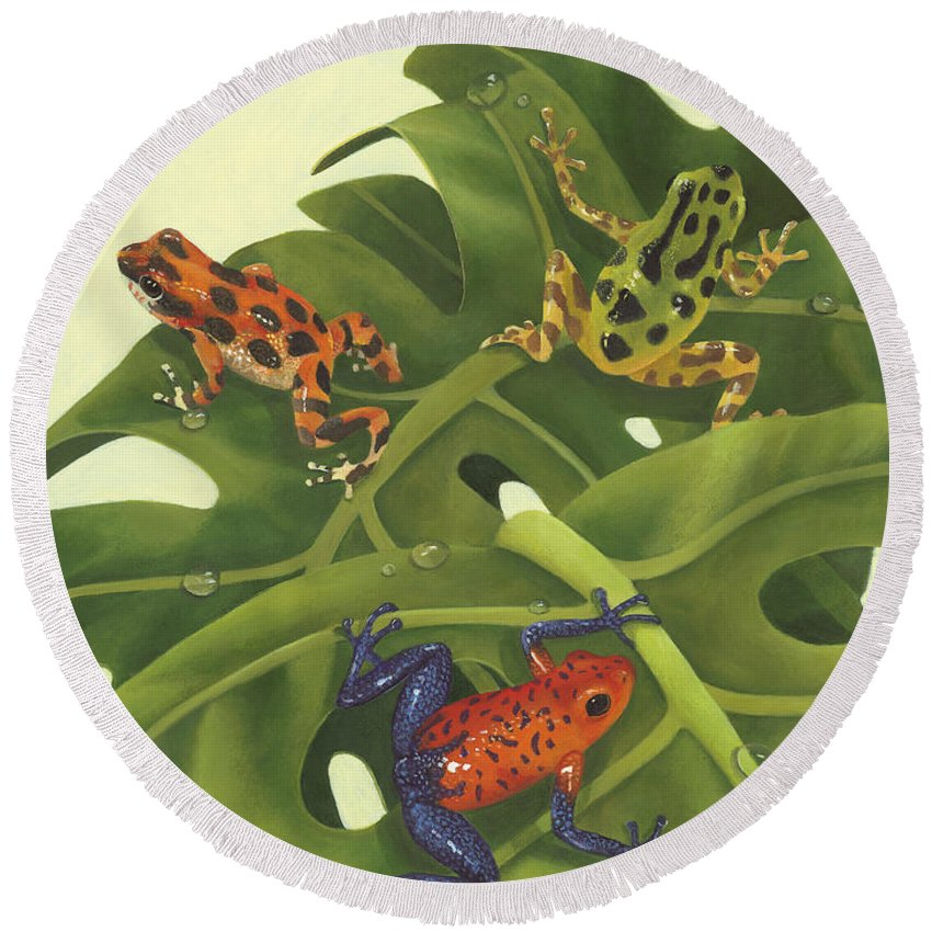 Tree Frog Beach Products