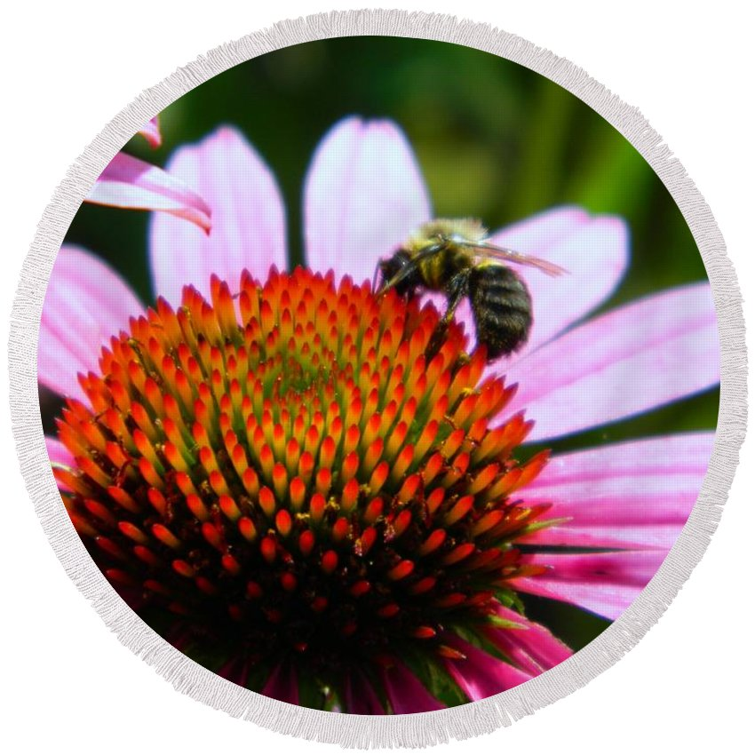 Pollinator Round Beach Towel featuring the photograph Pollinator by K L Roberts