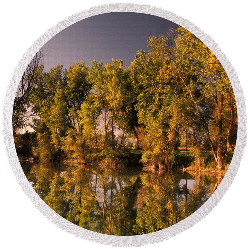Animal Round Beach Towel featuring the photograph Pond by Ron Sanford