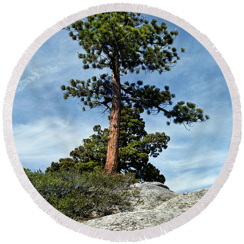 Beauty In Nature Round Beach Towel featuring the photograph Ponderosa Pine And Granite Boulders by Jeff Goulden