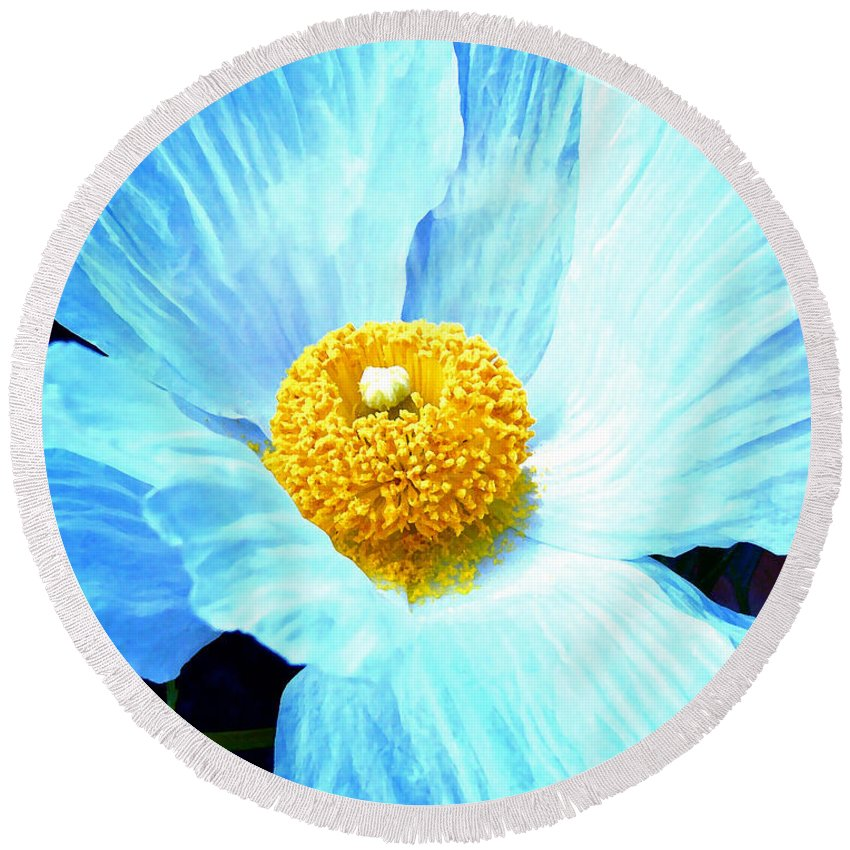 Flower Round Beach Towel featuring the photograph Poppy 8 by Pamela Cooper