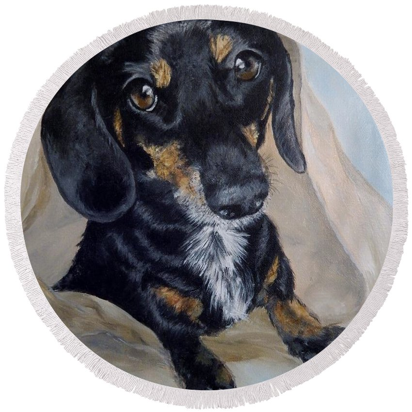 Dog Round Beach Towel featuring the painting Dachshund Dog by Graciela Castro