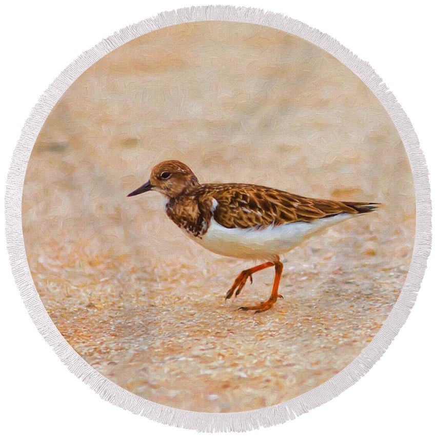 Beach Round Beach Towel featuring the photograph Portrait Of The Ruddy Turnstone by John M Bailey