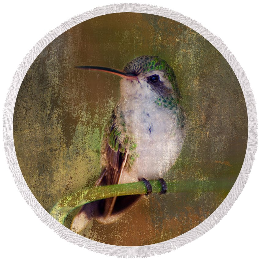 Hummer Round Beach Towel featuring the photograph Pretty Hummer by Barbara Manis