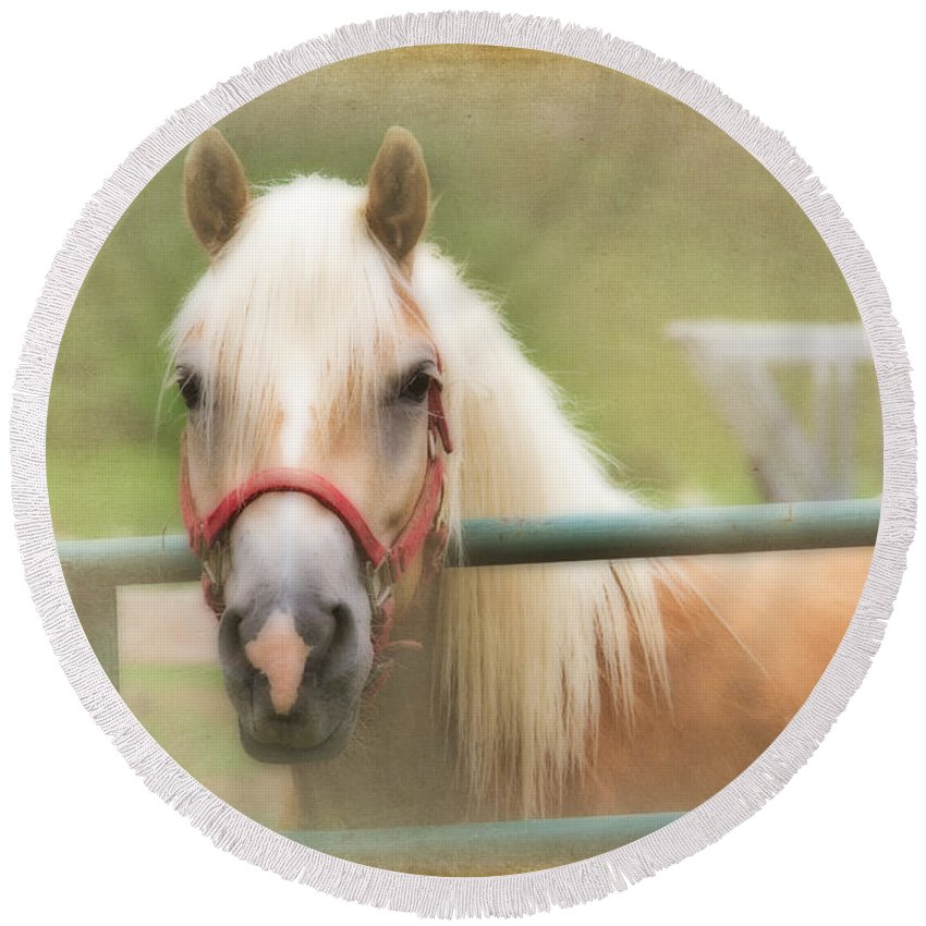 Animals Round Beach Towel featuring the photograph Pretty Palomino Horse Photography by Eleanor Abramson