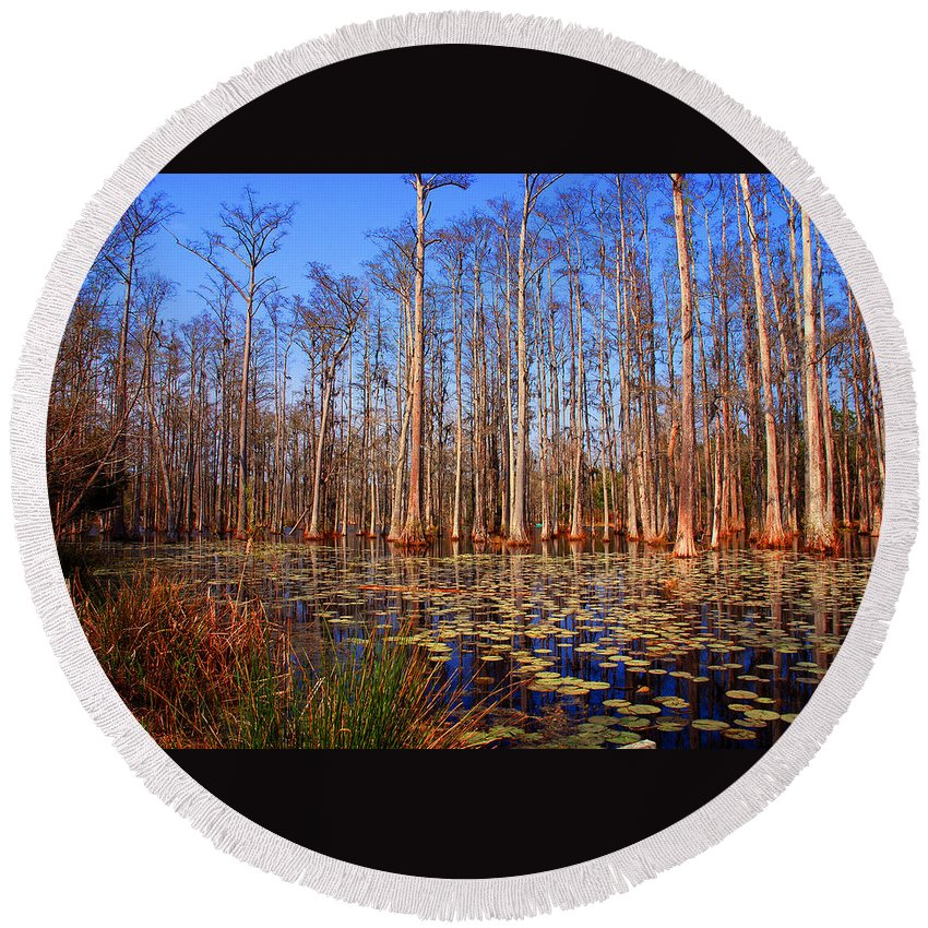 Swamp Round Beach Towel featuring the photograph Pretty Swamp Scene by Susanne Van Hulst