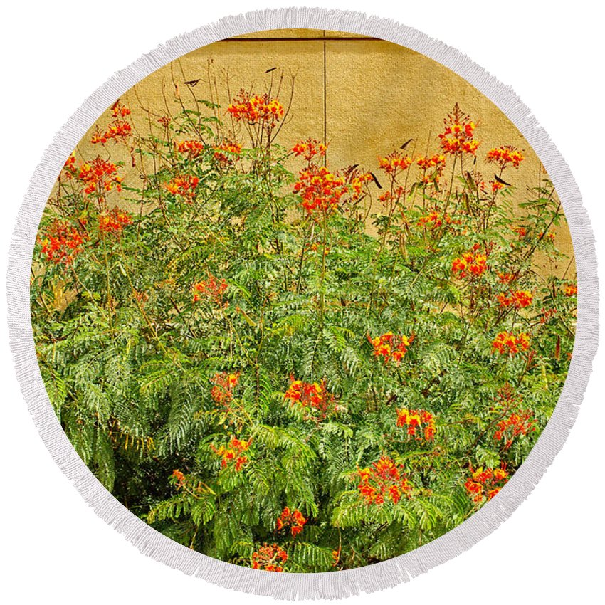Pride Of Barbados Round Beach Towel featuring the photograph Pride Of Barbados by Gary Richards