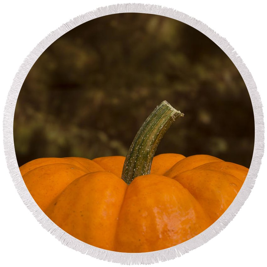 Pumpkin Round Beach Towel featuring the photograph Pumpkin Macro 4 B by John Brueske