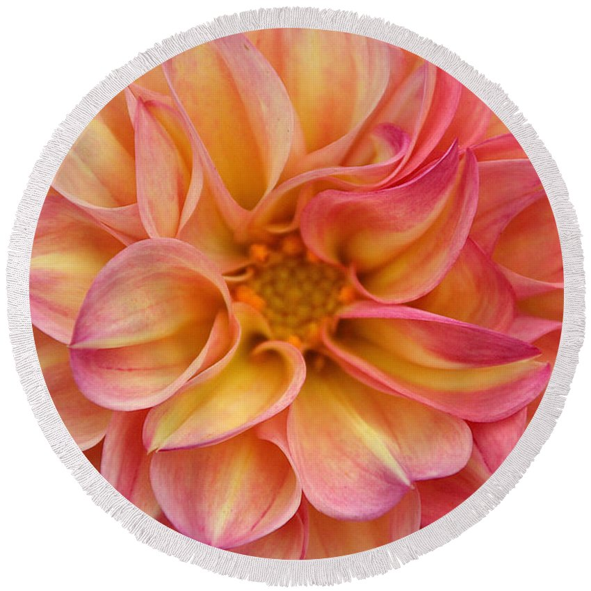 Flower Round Beach Towel featuring the photograph Pure Pastels by Susan Herber