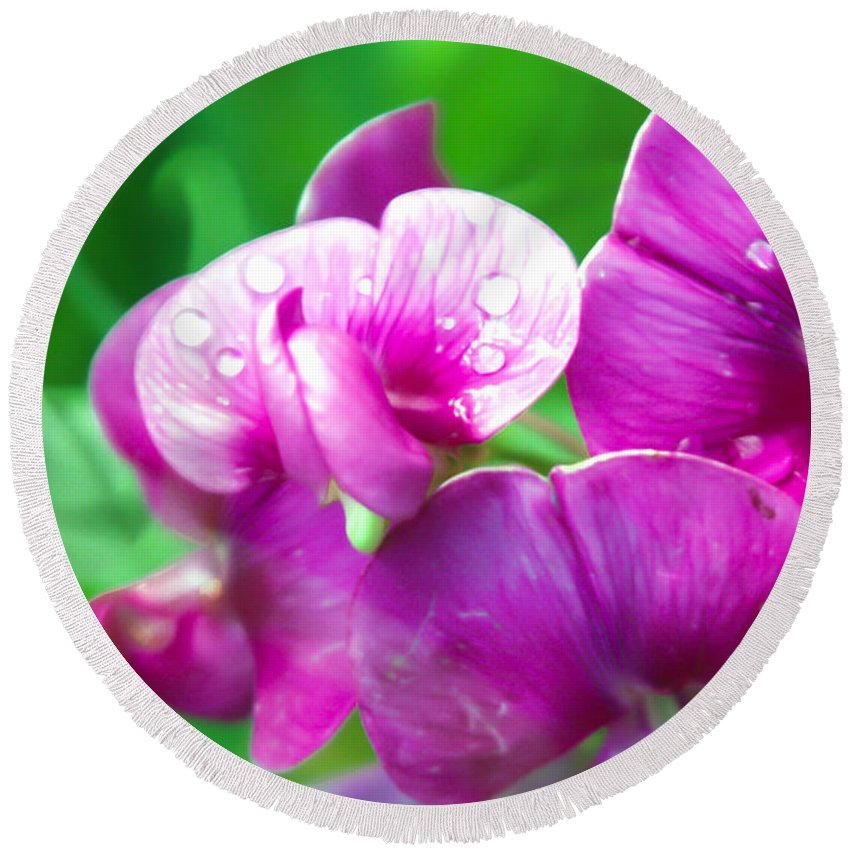 Purple Pansy Round Beach Towel featuring the photograph Purple Pansies by Optical Playground By MP Ray