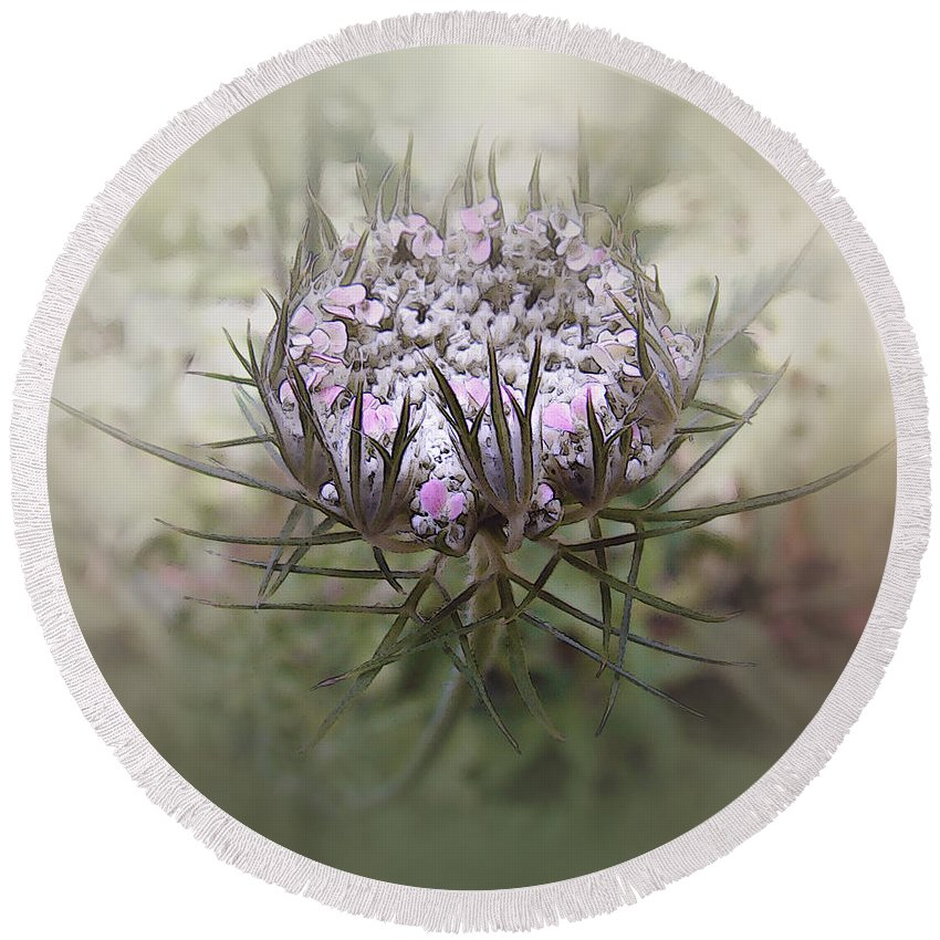 Queen Anne's Lace Round Beach Towel featuring the digital art Queen Of The Mist by RC DeWinter
