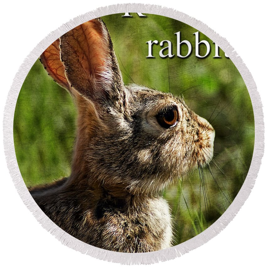 r Is For Rabbit Round Beach Towel featuring the photograph R Is For Rabbit by Priscilla Burgers