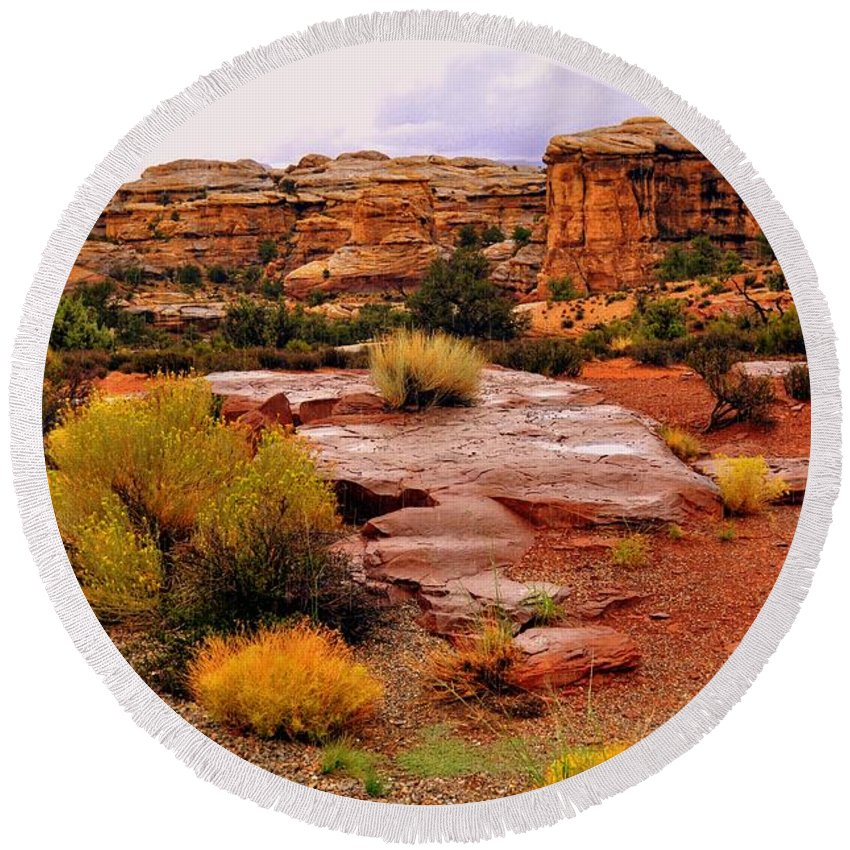 Canyonlands National Park Round Beach Towel featuring the photograph Rain At The Needles District 2 by Marty Koch