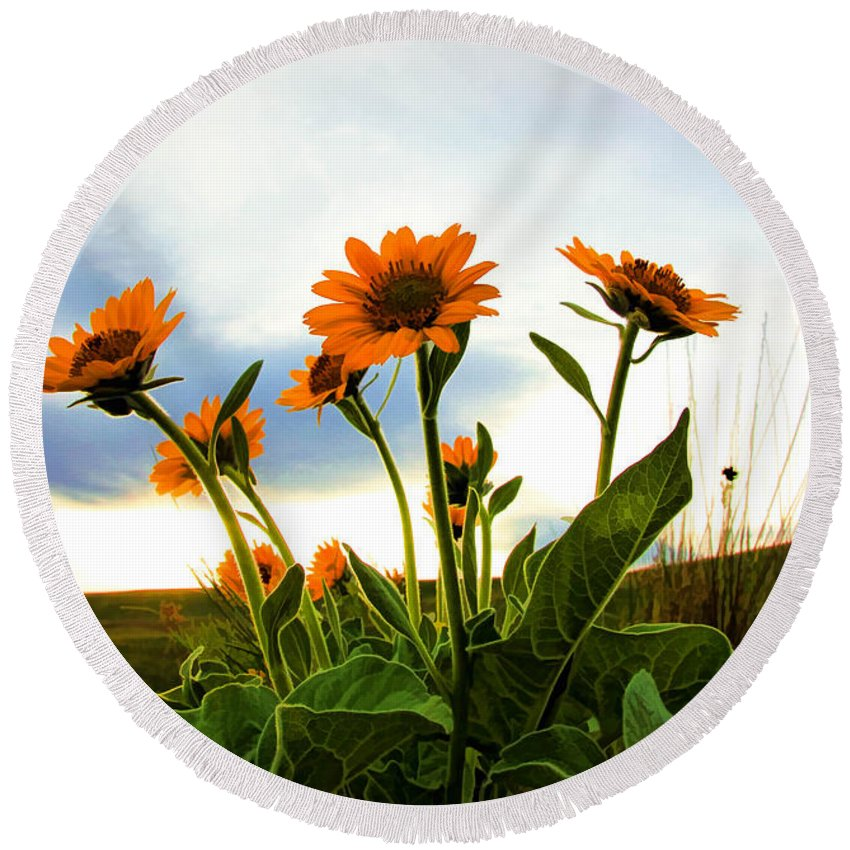 Wild Flowers Round Beach Towel featuring the photograph Reach To The Heavens II by Athena Mckinzie