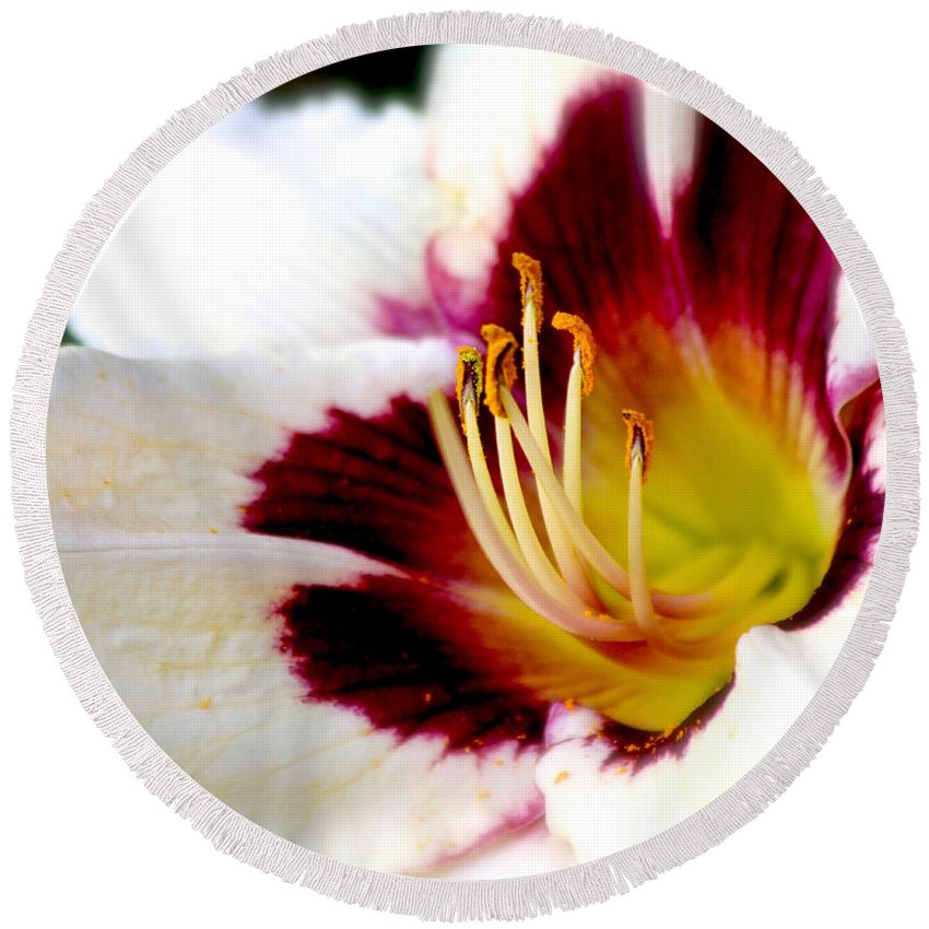 #lily Round Beach Towel featuring the photograph Reaching Out by Debbie Nobile