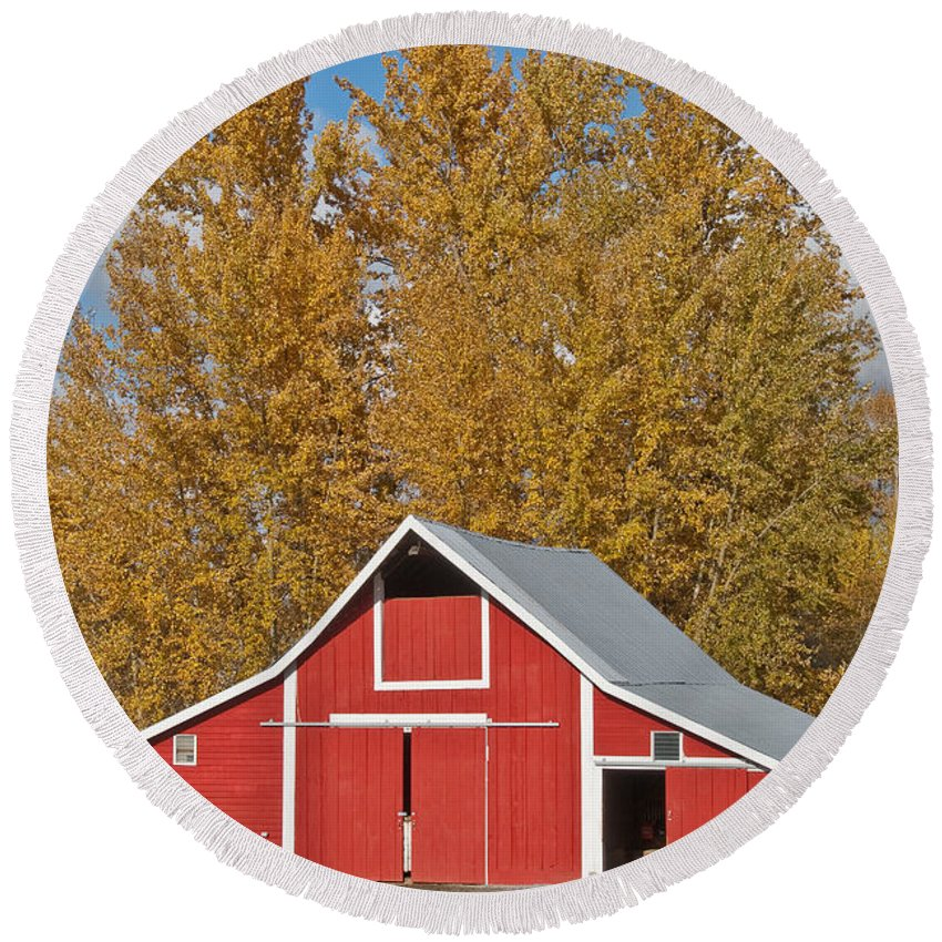 Agricultural Activity Round Beach Towel featuring the photograph Red Barn And Fall Colors by Jeff Goulden