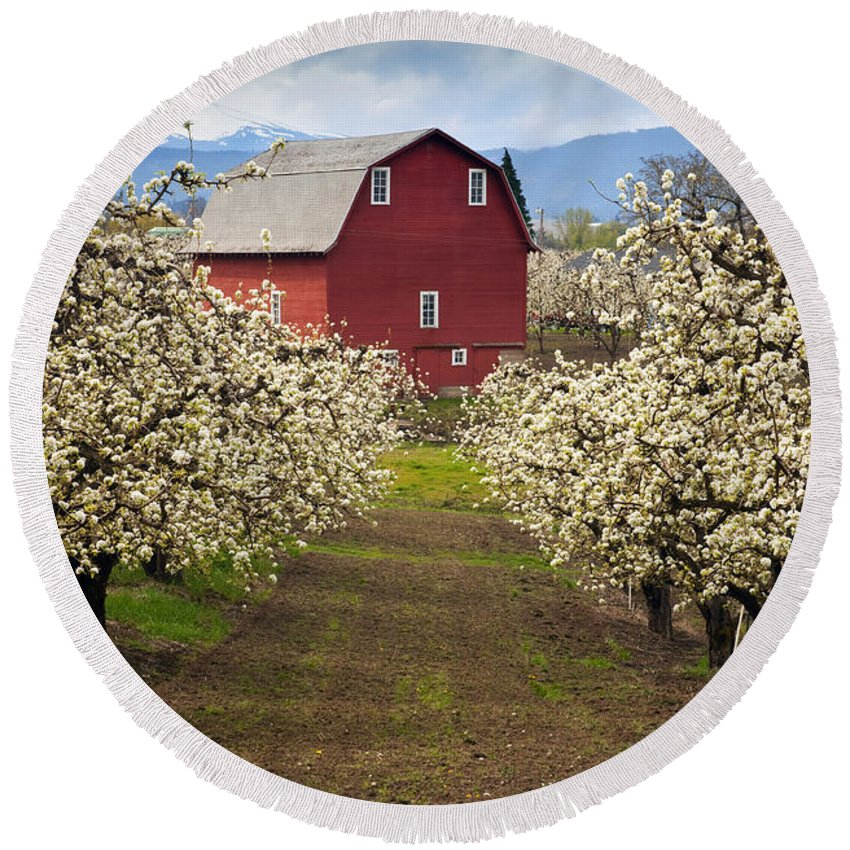Barn Round Beach Towel featuring the photograph Red Barn Spring by Mike Dawson