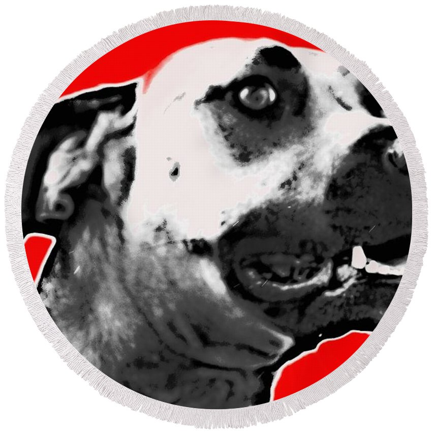 Dog Portrait Red Alicegipsonphotographs Round Beach Towel featuring the photograph Red Blooded Scooby Dog by Alice Gipson