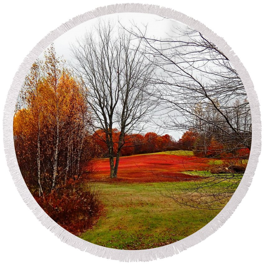 White Birches Rolling Green Lawn Bright Foliage And A Weird Beautiful Natural Ref Field Route 17 Maine Round Beach Towel featuring the photograph Red Field Autumn by Expressionistart studio Priscilla Batzell