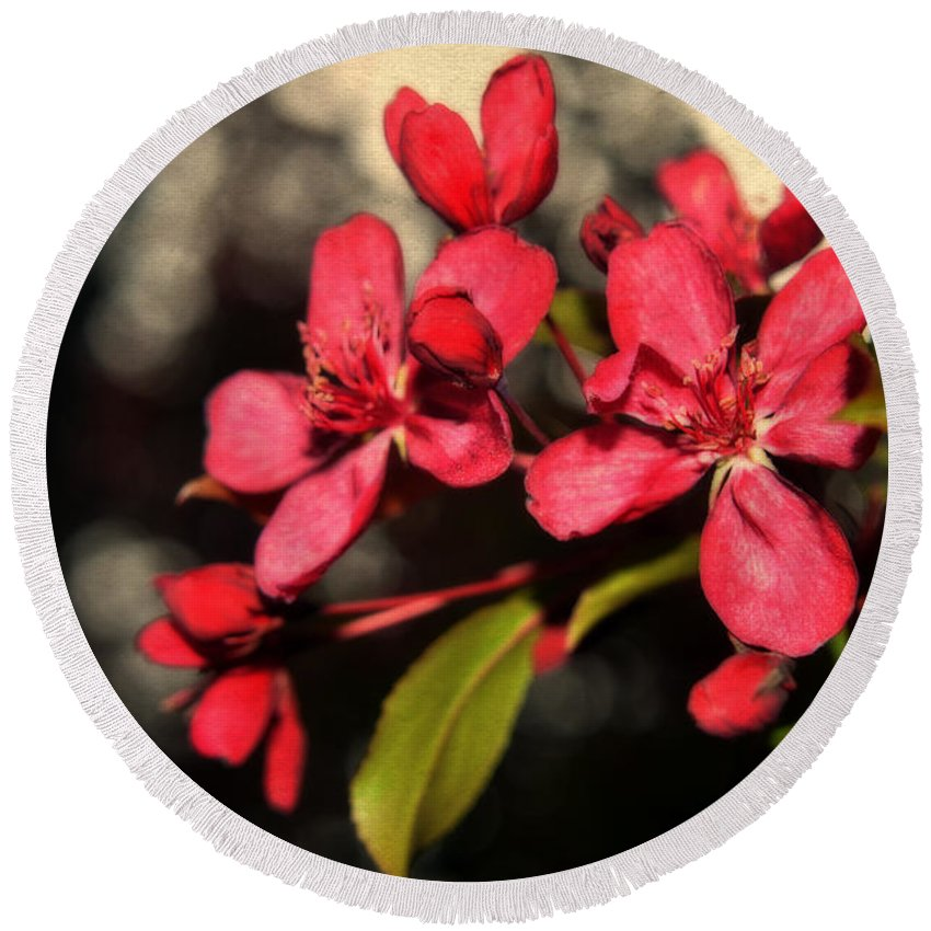 Red Flowering Crabapple Round Beach Towel featuring the photograph Red Flowering Crabapple Blossoms by Mary Machare