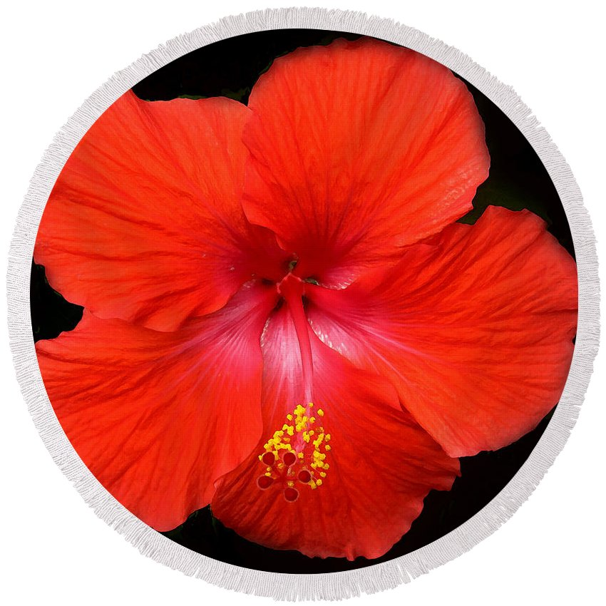 Red Round Beach Towel featuring the photograph Red Red by Ian MacDonald