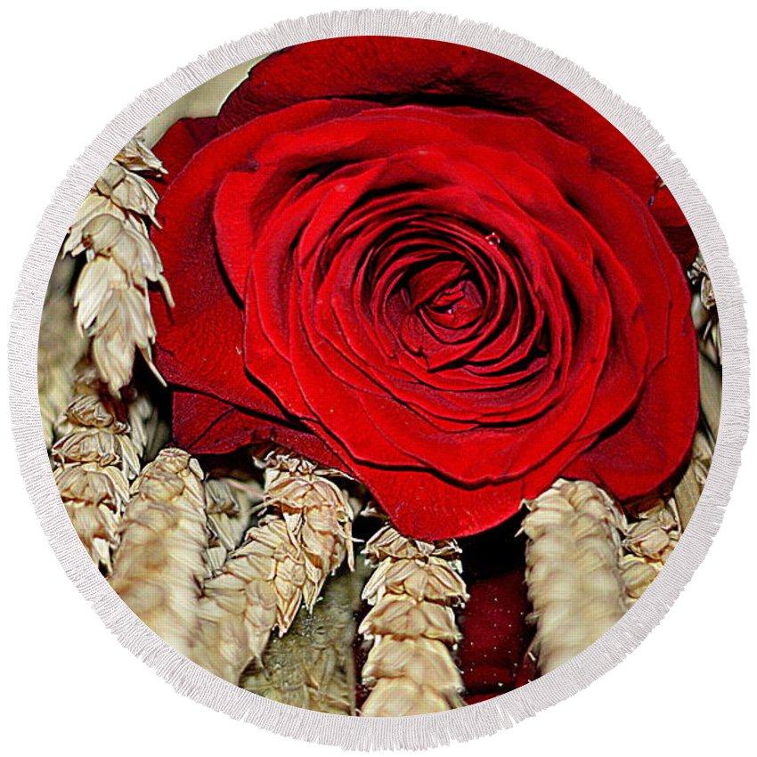Roses Round Beach Towel featuring the photograph Red Rose On A Bed Of Wheat by Diana Mary Sharpton