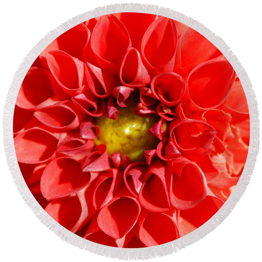 Ed Flower Round Beach Towel featuring the photograph Red Tubular Flower by Optical Playground By MP Ray