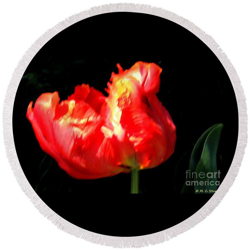 M C Sturman Round Beach Towel featuring the painting Red Tulip Blurred by M c Sturman