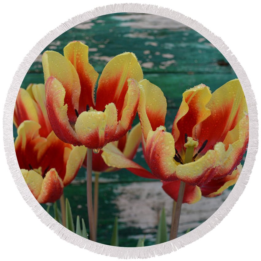 Tulip Round Beach Towel featuring the mixed media Red Yellow Tulips by To-Tam Gerwe