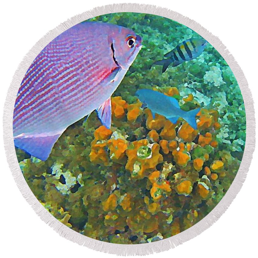 Fish Round Beach Towel featuring the painting Reef Life by John Malone