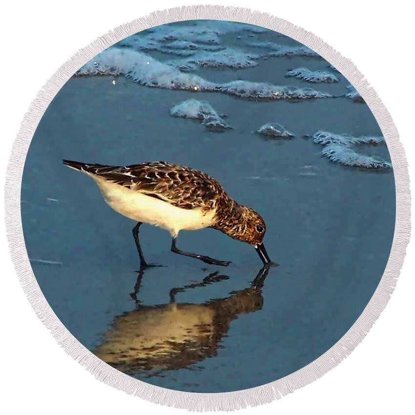 Sandpiper Round Beach Towel featuring the photograph Reflection At Sunset by Sandi OReilly