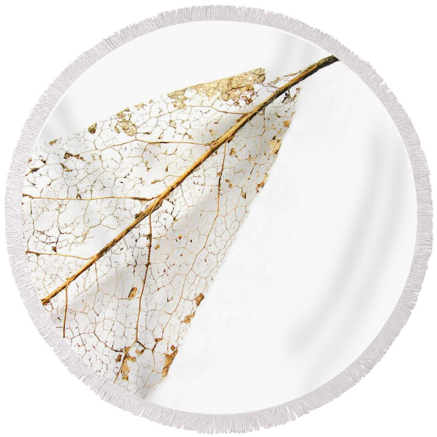 Leaf Round Beach Towel featuring the photograph Remnant Leaf by Ann Horn