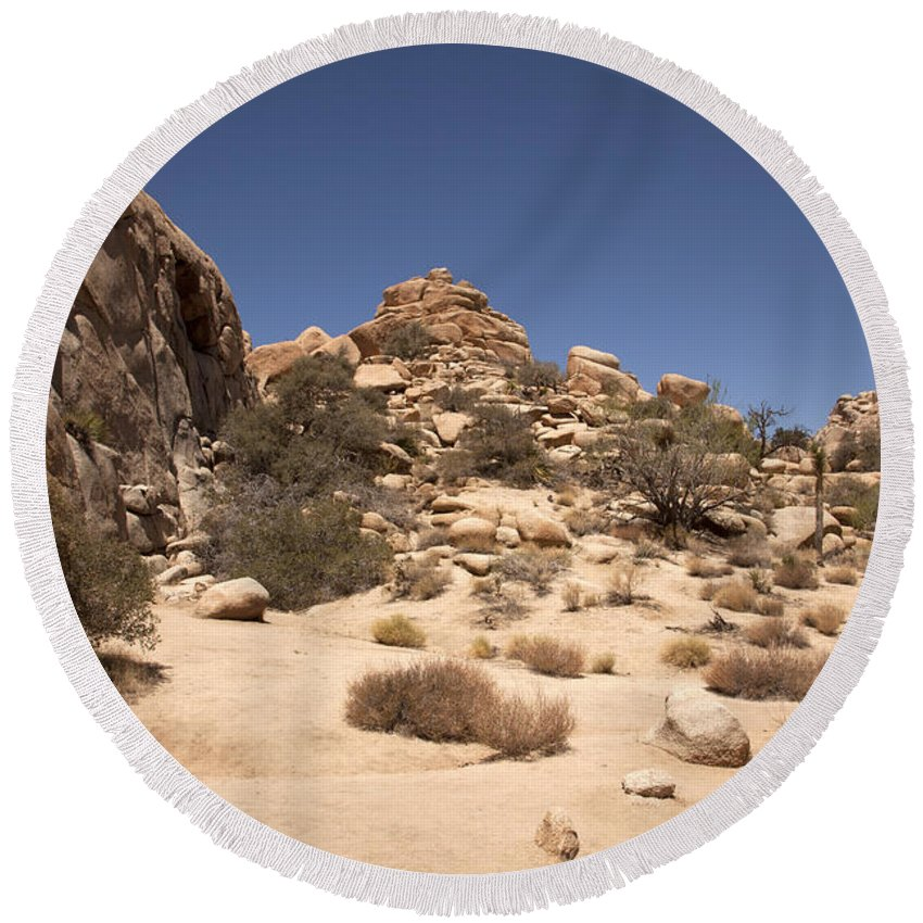 joshua Tree joshua Tree National Park Round Beach Towel featuring the photograph Repeating Yourself by Amanda Barcon