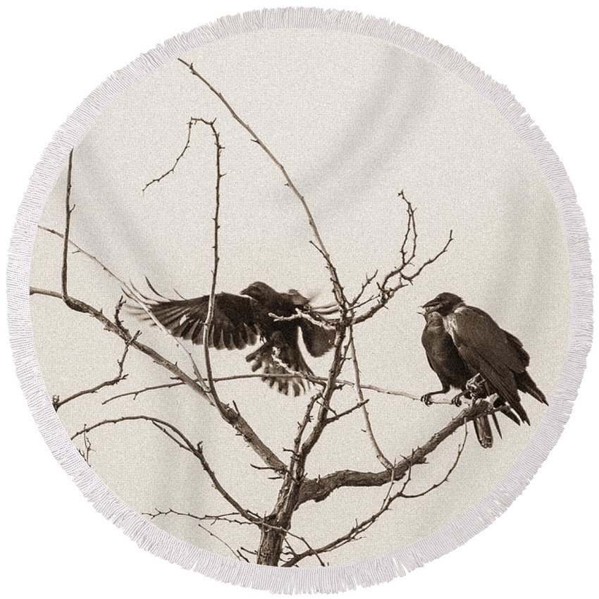 Raven Round Beach Towel featuring the photograph Rest Area I by Marie-Dominique Verdier