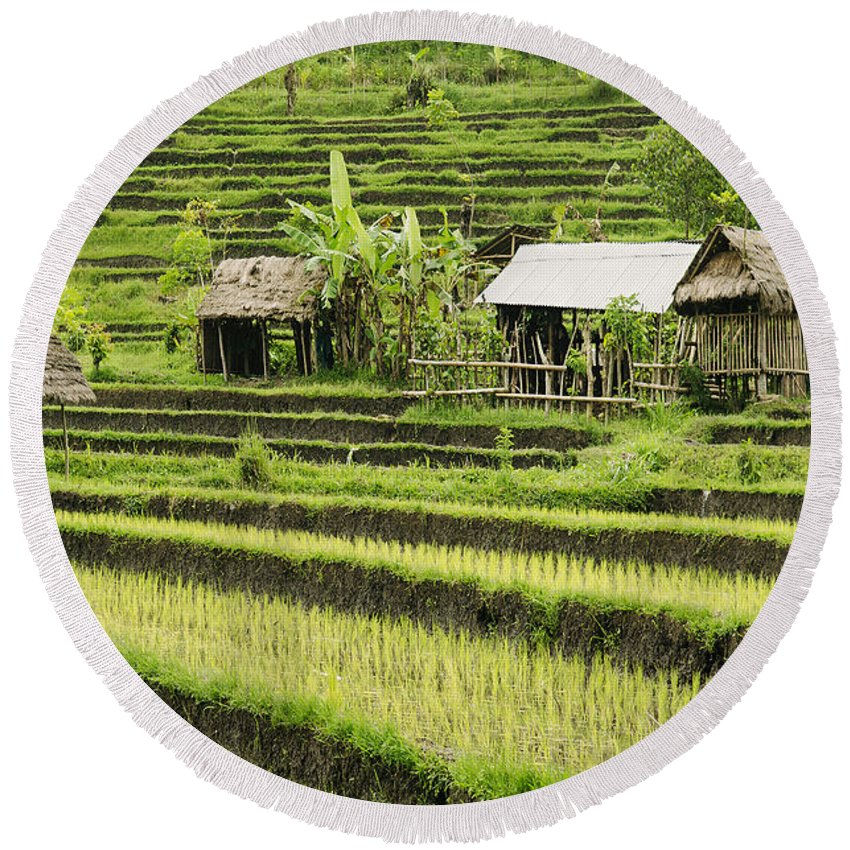 Agriculture Round Beach Towel featuring the photograph Rice Fields In Bali Indonesia by Jacek Malipan