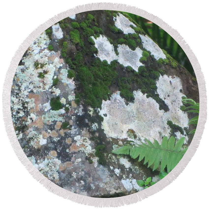 Rocks Round Beach Towel featuring the photograph Rock With Moss by Anita Burgermeister