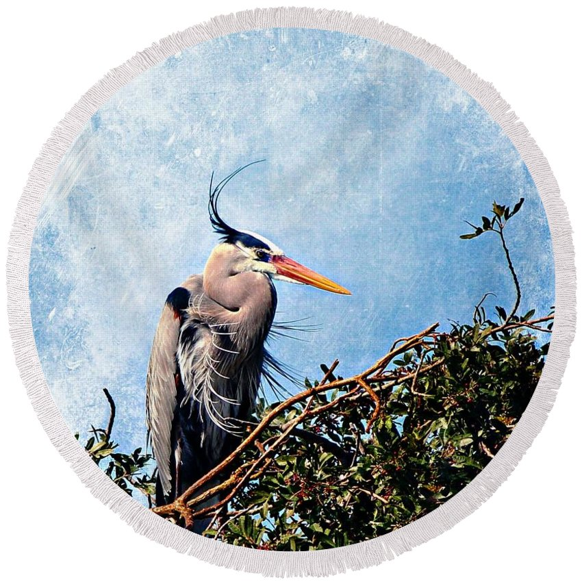 Great Blue Heron Round Beach Towel featuring the painting Rookery Great Blue by Barbara Chichester